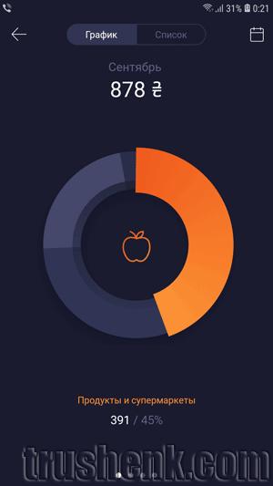 Отображение расходов в приложении